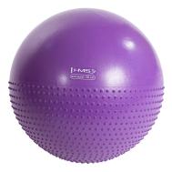 Мяч для фитнеса (фитбол) полумассажный HMS YB03 55 см Anti-Burst Purple